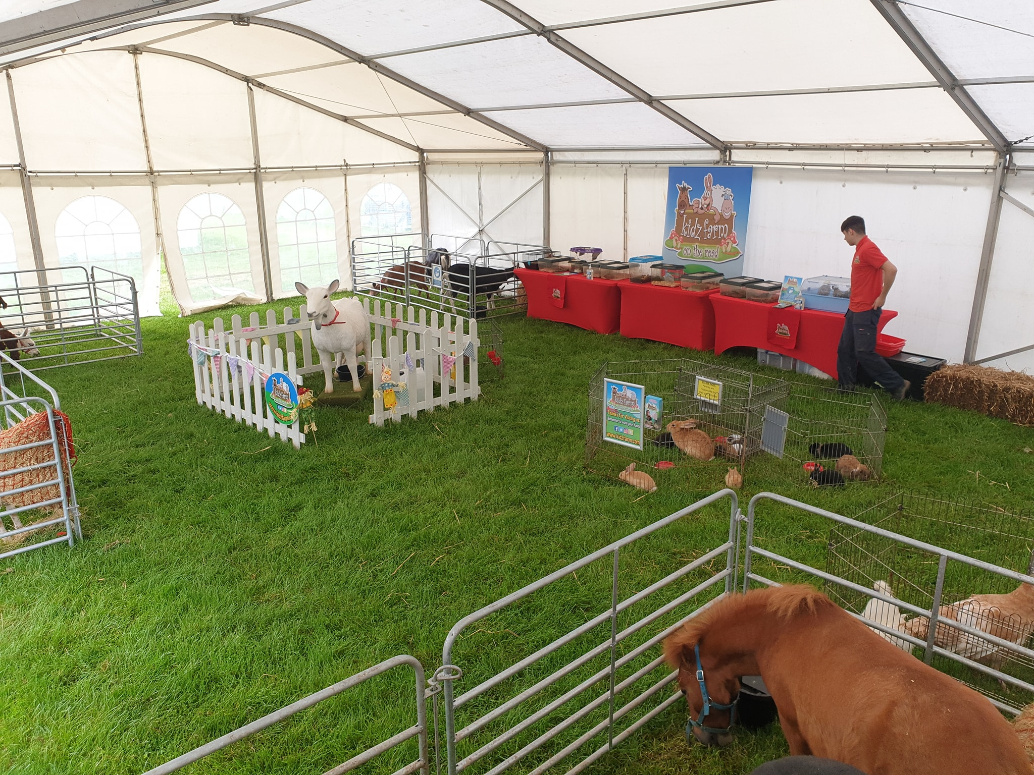 We checked every corner of the farm today to bring some of the kidz farm animals that don't get out very often so come along today and meet them at Randox Antrim Show…..🦂🐌🦔🐐🕷 and the sun is even shining this year too.🌞🌞🌞