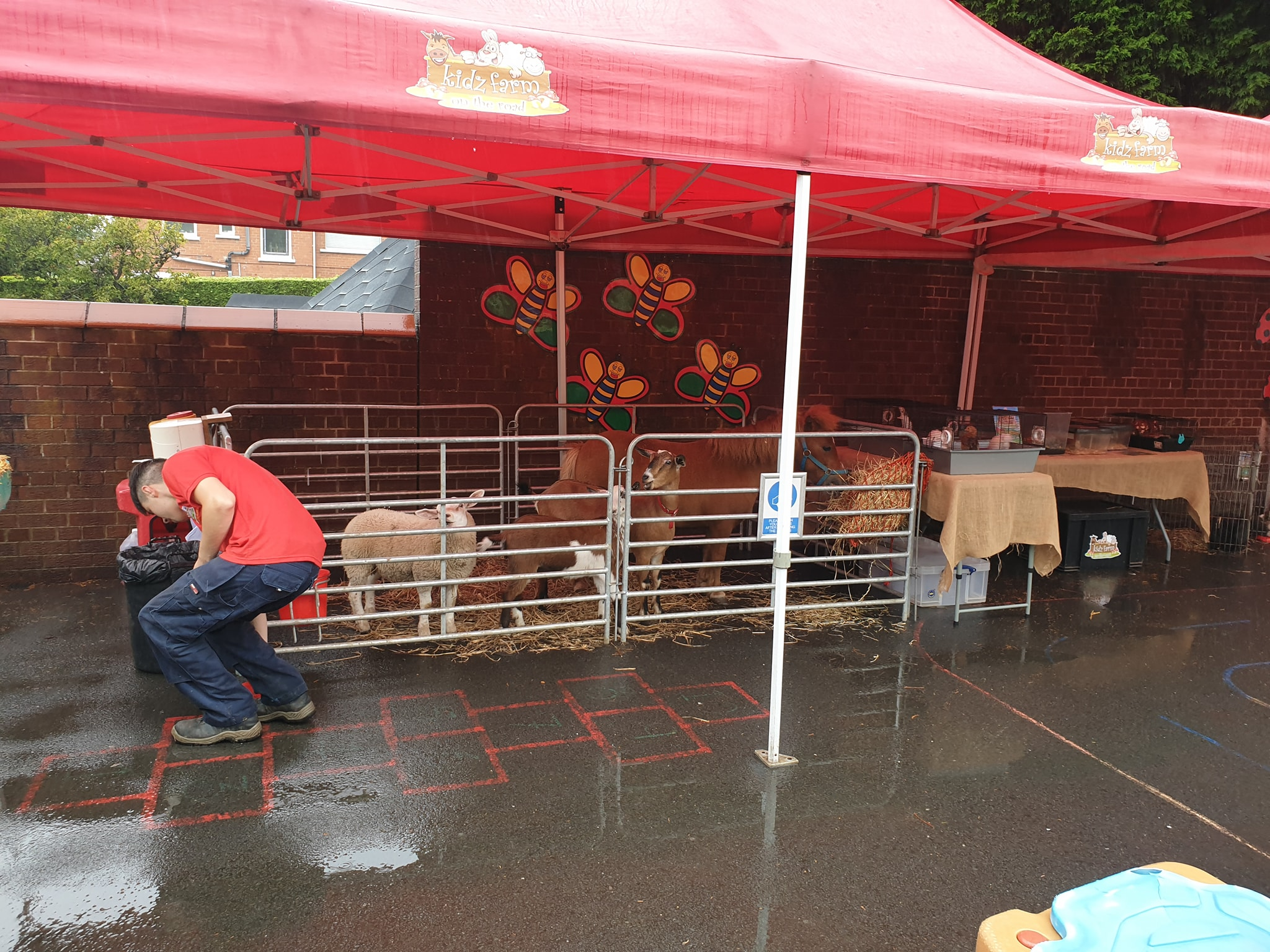 A wet day but certainly didnt stop the fun had at a Nursery today.🐐🐌🐑