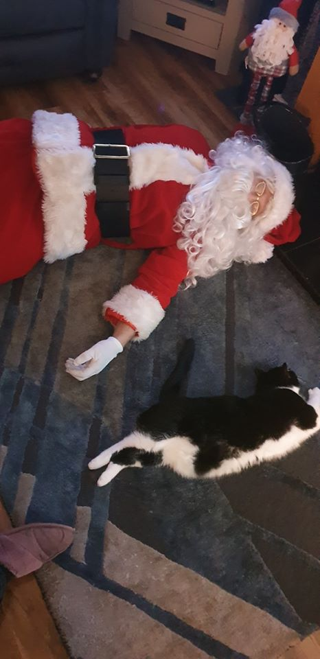 So Santa visited lots of boys and girls over the past few weeks and when he came in tonight after another busy day…… well I took a few pics to show you all.. Hes now getting a well deserved sleep with Ruby (the cat) now all ready for Christmas Eve..?????