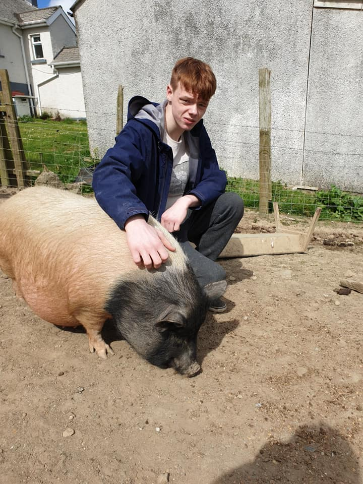 A fantastic party today in Lockdown. Our wee son had a great day at the farm with his brother and sisters🎉🎉 happy 19th birthday Alex😂😂 never to old for a farm party…………..