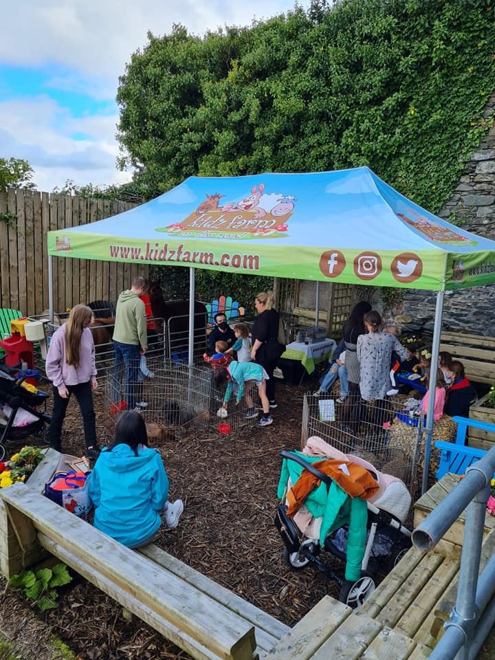 Read more about the article Fantastic fun day!🐇🐢🐍🦎🦆at Glenview Community Centre.